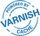 Varnish Cache | LiteSpeed with Varnish Cache